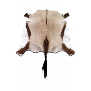 Gemsbok Antelope Rug Skin Rug Approximate Size: 5 X 5 feet Antelope Rug Deer Rug
