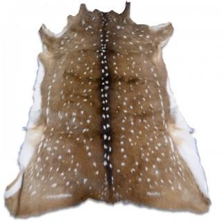 Deer Rug - Axis Deer Skins Monster Size